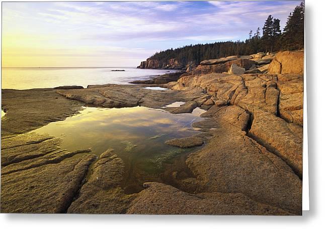 Maine Shore Greeting Cards - Atlantic Coast Near Thunder Hole Acadia Greeting Card by Tim Fitzharris