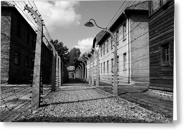 Against The War Greeting Cards - Auschwitz  Greeting Card by Mountain Dreams