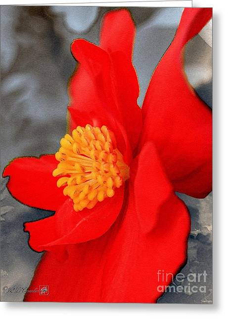 Picturesque Mixed Media Greeting Cards - Begonia named Nonstop Mocca Scarlet Greeting Card by J McCombie