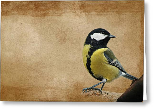 Winter Roads Mixed Media Greeting Cards - Bird Greeting Card by Heike Hultsch