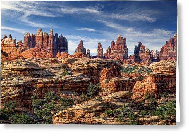 Slickrock Greeting Cards - Canyonlands National Park Utah Greeting Card by Utah Images