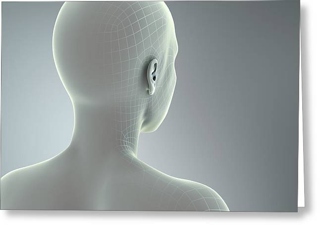 Human Forms Greeting Cards - Digital Being Greeting Card by Science Picture Co