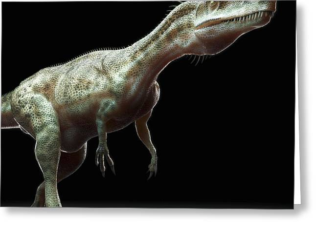 Extinction Greeting Cards - Dinosaur Monolophosaurus Greeting Card by Science Picture Co