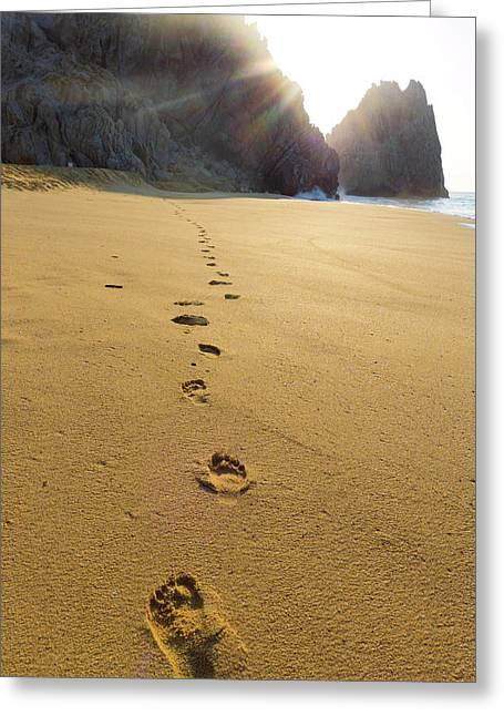 Divorce Beach, Cabo San Lucas, Baja Greeting Card by Douglas Peebles