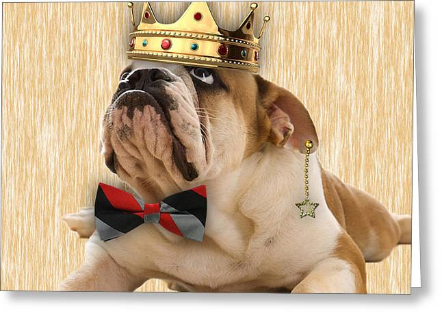 Pet Portrait Greeting Cards - English Bulldog Bowtie Collection Greeting Card by Marvin Blaine
