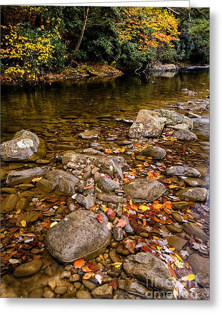 Late Fall Greeting Cards - Fall Color Gauley River Greeting Card by Thomas R Fletcher