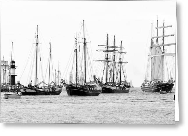 Deutschland Pyrography Greeting Cards - Hanse Sail Greeting Card by Steffen Gierok