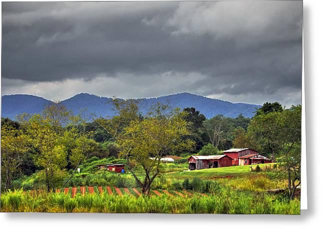 Franklin Farm Greeting Cards - Iotla Valley Greeting Card by Savannah Gibbs