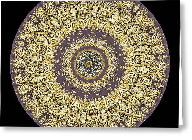 Biology Greeting Cards - Kaleidoscope Ernst Haeckl Sea Life Series Greeting Card by Amy Cicconi