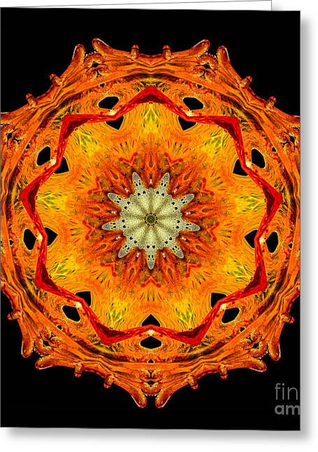 Patterned Greeting Cards - Kaleidoscope of Blown Glass Greeting Card by Amy Cicconi