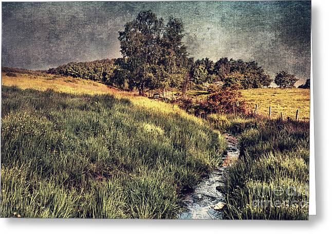 Beautiful Creek Digital Greeting Cards - Landscape Greeting Card by Svetlana Sewell