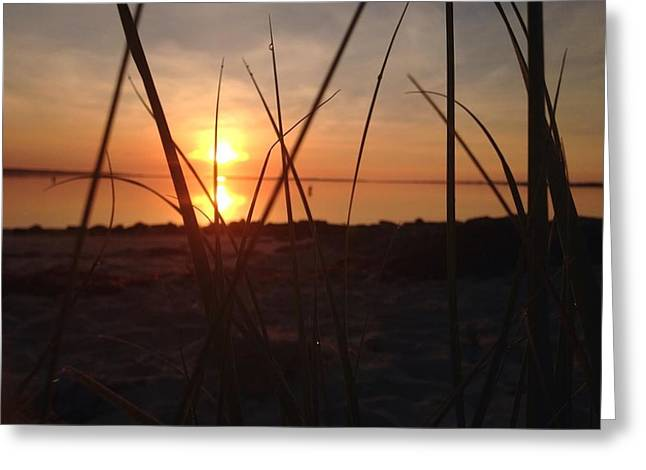 Surfcast Greeting Cards - Long Island Ny Shore Greeting Card by Mike Mancini