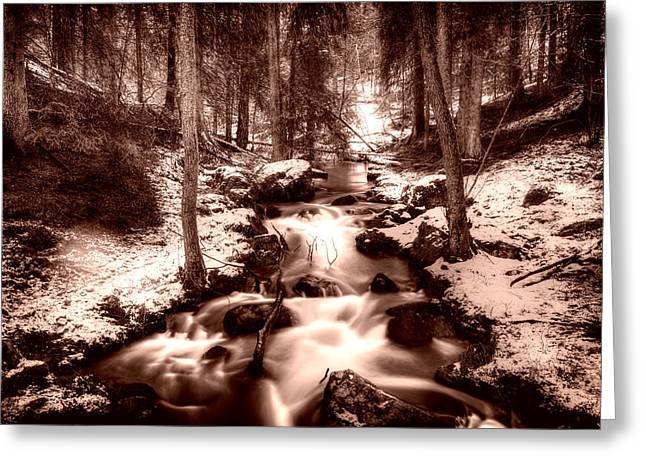 Sienna Greeting Cards - Lovely Winter Stream - Sweden Greeting Card by Mountain Dreams