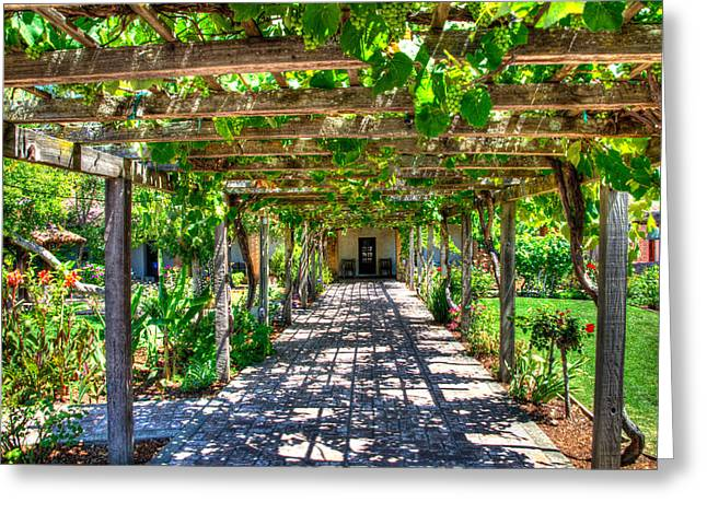 Trellis Greeting Cards - Mission San Luis Obispo - California Greeting Card by Jon Berghoff