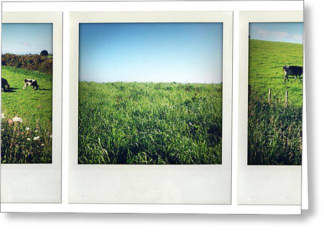 Green Grass Blue Sky Greeting Cards - New Zealand Greeting Card by Les Cunliffe