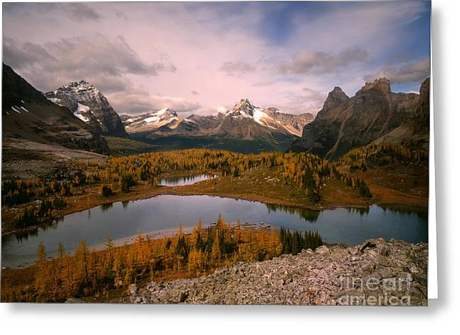 Odaray And Cathedral Mountains Greeting Card by Tracy Knauer
