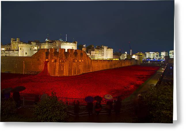 Medway Greeting Cards - Poppies Tower of London night   Greeting Card by David French