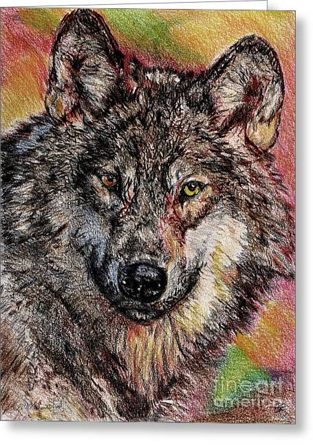 Mccombie Drawings Greeting Cards - Portrait of a Gray Wolf Greeting Card by J McCombie