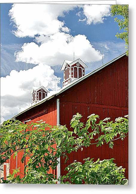 Mr Rodgers Greeting Cards - PS Schroeder Estate Greeting Card by Carol Toepke