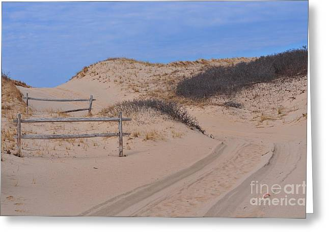 Race Point Greeting Cards - Race Point Dunes Greeting Card by Catherine Reusch  Daley