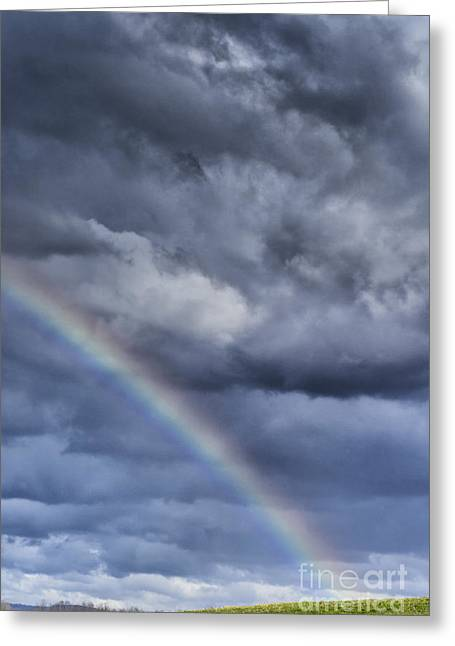Appalachian Farm Greeting Cards - Rainbow over Pasture Field Greeting Card by Thomas R Fletcher