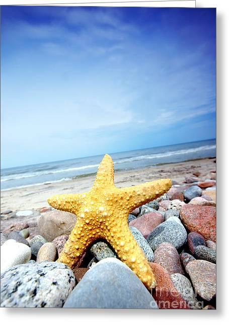 Starfish Greeting Card by Michal Bednarek