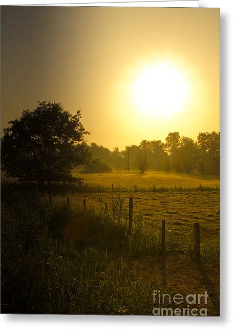 Photo Art Gallery Greeting Cards - Sunrise Greeting Card by Brothers Beerens