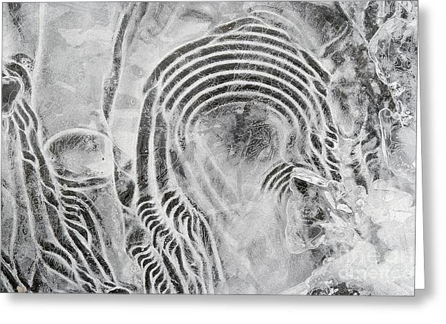 Vesicles Greeting Cards - Texture Of Ice Greeting Card by Michal Boubin