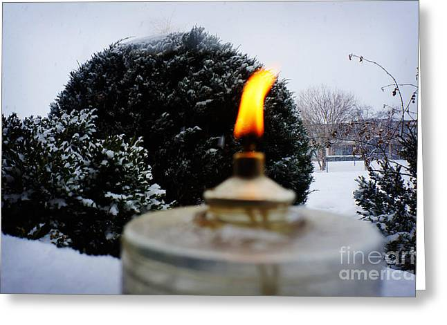 Pine Cones Greeting Cards - The Candle in the Snow Greeting Card by Celestial Images