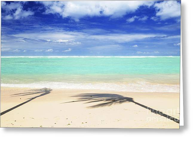 Tropical Oceans Greeting Cards - Tropical beach Greeting Card by Elena Elisseeva