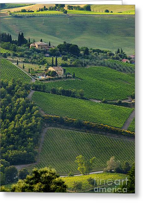 Brunello Greeting Cards - Tuscany Greeting Card by Brian Jannsen