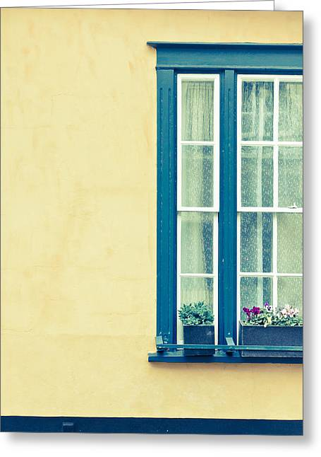 Window  Greeting Card by Tom Gowanlock