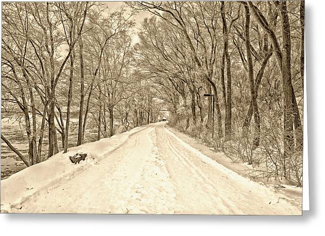Snow-covered Landscape Greeting Cards - Winter Drive Greeting Card by Ali Inay