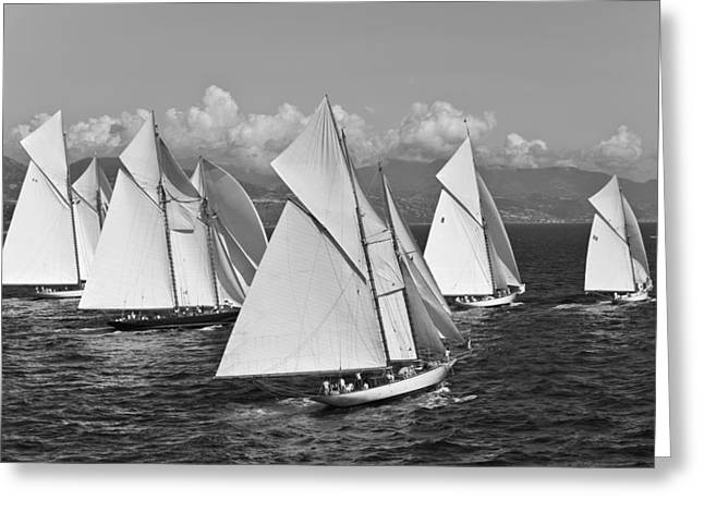 Recently Sold -  - Schooner Greeting Cards - 5 x Schooners Greeting Card by Gilles Martin-Raget