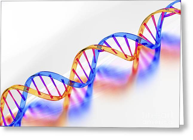 Helix Greeting Cards - Dna Molecule, Artwork Greeting Card by Laguna Design