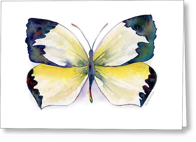 Background Paintings Greeting Cards - 55 Mexican Yellow Butterfly Greeting Card by Amy Kirkpatrick