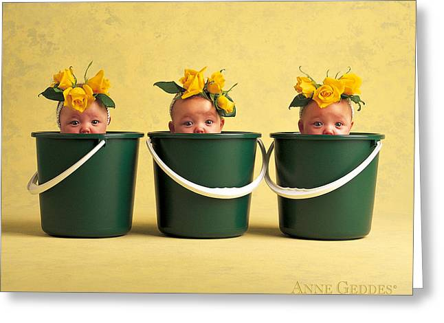Yellows Greeting Cards - Untitled Greeting Card by Anne Geddes