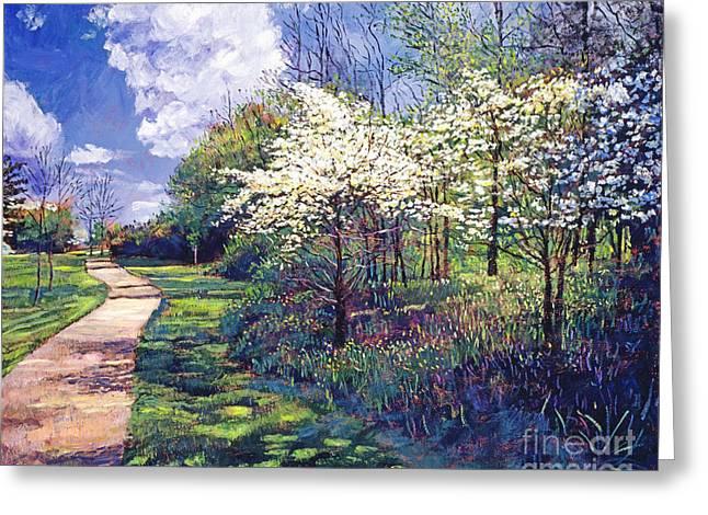Dogwood Greeting Cards - Dogwood Trees in Bloom Greeting Card by David Lloyd Glover