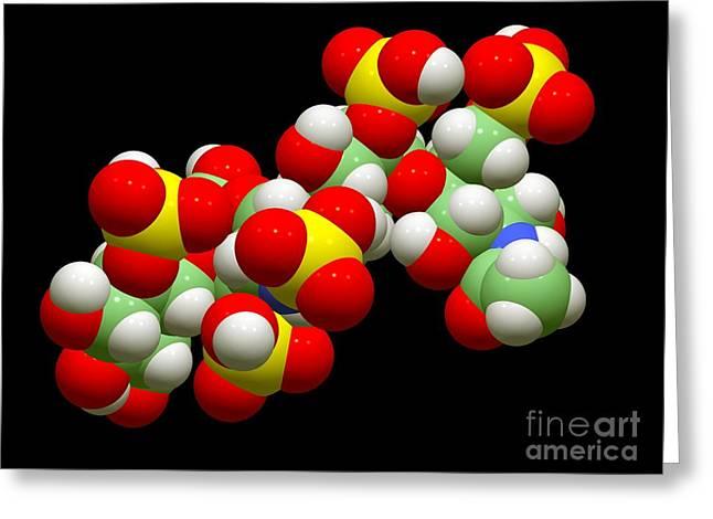 Anti Greeting Cards - Anticoagulant Molecule Greeting Card by Dr. Tim Evans