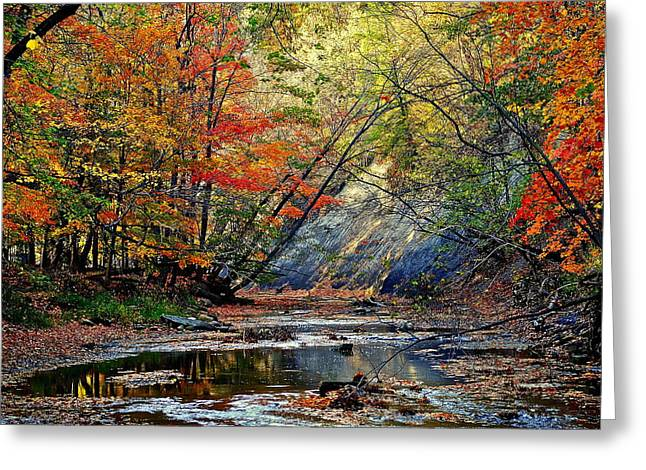 Glowing Water Greeting Cards - Autumn Stream Greeting Card by Frozen in Time Fine Art Photography