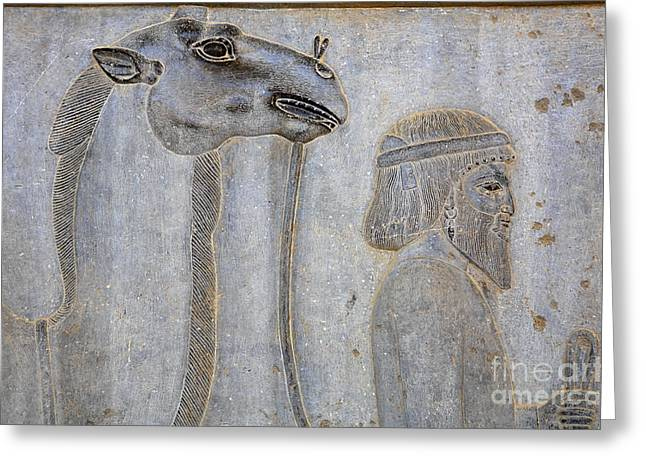 Ancient Persian Art Greeting Cards - Bas Relief at Persepolis in Iran Greeting Card by Robert Preston