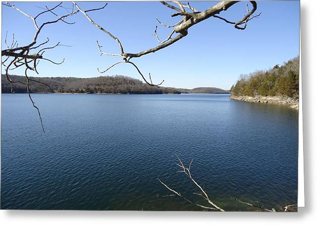 Beaver Lake Photographs Greeting Cards - Beaver Lake Series Greeting Card by Tashia  Summers