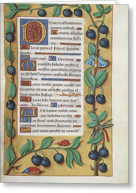 Book Of Hours Greeting Card by British Library