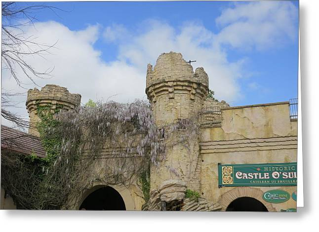 Fun Photographs Greeting Cards - Busch Gardens - 12124 Greeting Card by DC Photographer