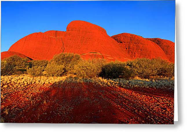Central Greeting Cards - Central Australia Greeting Card by Bill  Robinson
