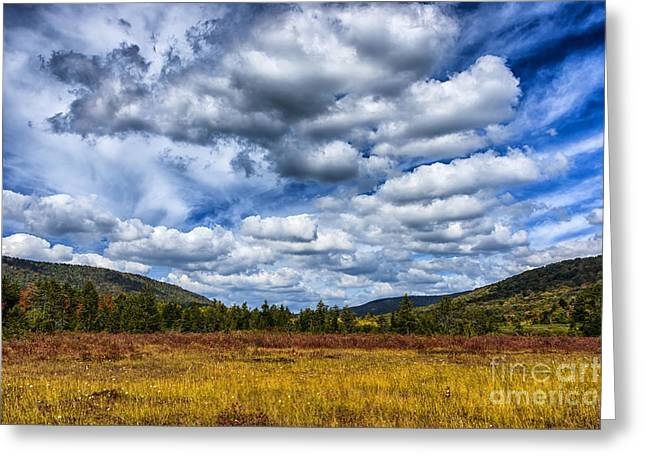Peat Greeting Cards - Cranberry Glades Botanical Area Greeting Card by Thomas R Fletcher