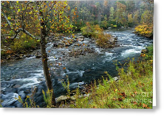 Nicholas County Greeting Cards - Fall Color Cherry River Greeting Card by Thomas R Fletcher
