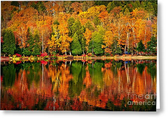 Yellow Reflections Greeting Cards - Fall forest reflections Greeting Card by Elena Elisseeva
