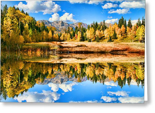 Refelctions Greeting Cards - Fall Refelctions Greeting Card by Mark Smith