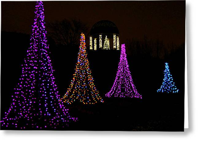 Landscape Framed Prints Greeting Cards - Festival of Lights - Christmas at the Botanical Gardens Greeting Card by Carol Toepke